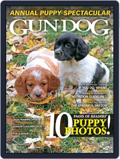 Gun Dog March 1st, 2018 Digital Back Issue Cover
