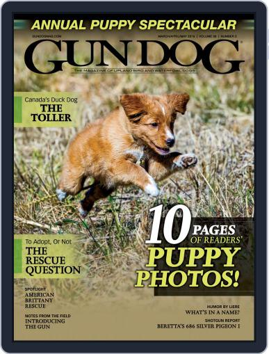 Gun Dog March 1st, 2019 Digital Back Issue Cover