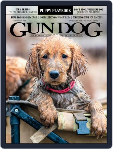Gun Dog March 1st, 2020 Digital Back Issue Cover