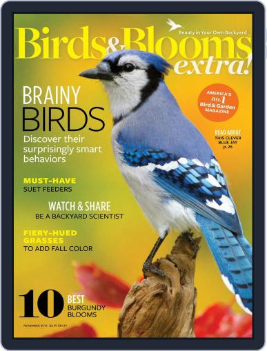 Birds and Blooms Extra November 1st, 2018 Digital Back Issue Cover