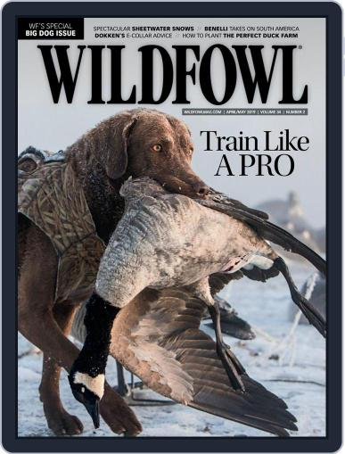 Wildfowl April 1st, 2019 Digital Back Issue Cover