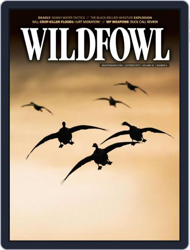 Wildfowl October 1st, 2019 Digital Back Issue Cover