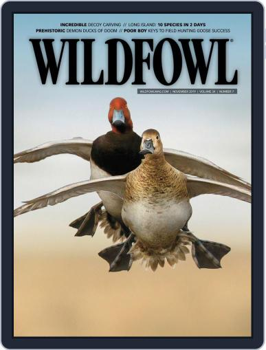 Wildfowl November 1st, 2019 Digital Back Issue Cover