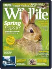 Bbc Wildlife (Digital) Subscription April 1st, 2019 Issue