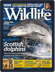 Bbc Wildlife (Digital) Subscription June 1st, 2019 Issue