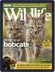 Bbc Wildlife (Digital) Subscription October 1st, 2019 Issue