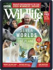 Bbc Wildlife (Digital) Subscription November 1st, 2019 Issue
