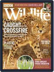 Bbc Wildlife (Digital) Subscription February 1st, 2020 Issue