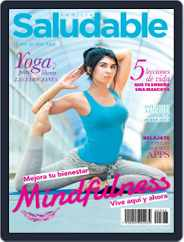 Familia Saludable (Digital) Subscription August 1st, 2017 Issue