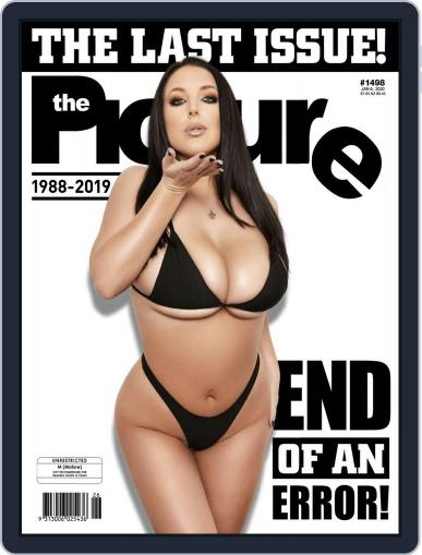 The Picture Digital Back Issue Cover