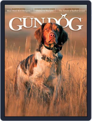 Gun Dog Magazine (Digital) November 1st, 2021 Issue Cover