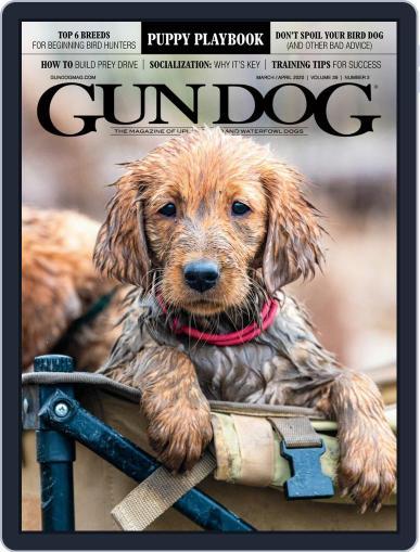 Gun Dog (Digital) March 1st, 2020 Issue Cover