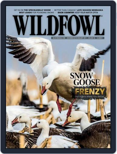 Wildfowl December 1st, 2018 Digital Back Issue Cover
