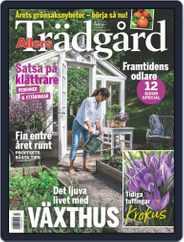 Allers Trädgård (Digital) Subscription February 1st, 2020 Issue