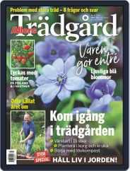 Allers Trädgård (Digital) Subscription March 1st, 2020 Issue