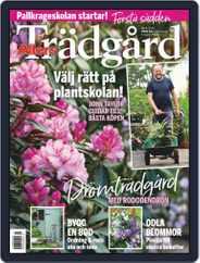 Allers Trädgård (Digital) Subscription April 1st, 2020 Issue