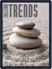 Collezioni Trends (Digital) Subscription December 19th, 2013 Issue