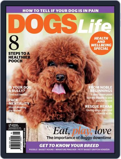 Dogs Life Magazine (Digital) May 1st, 2017 Issue Cover
