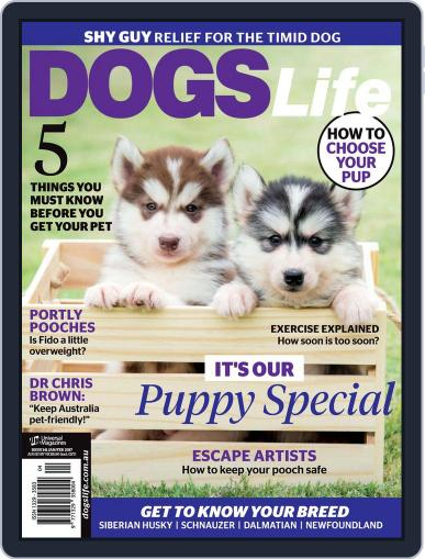 Dogs Life Magazine (Digital) January 1st, 2017 Issue Cover