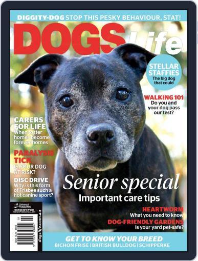 Dogs Life Magazine (Digital) September 1st, 2016 Issue Cover
