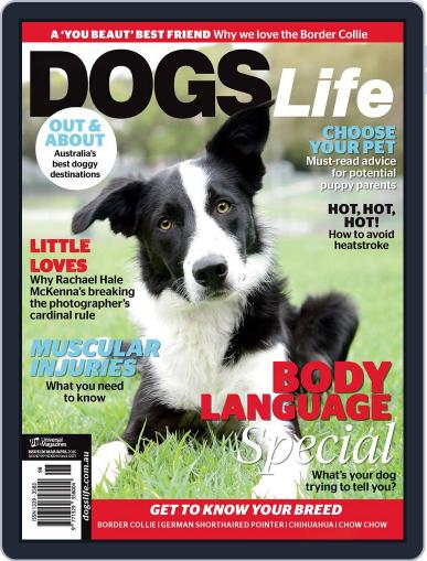 Dogs Life Magazine (Digital) February 18th, 2016 Issue Cover