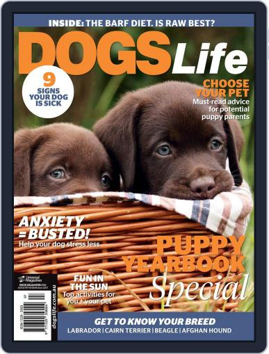 Dogs Life Magazine (Digital) December 16th, 2015 Issue Cover