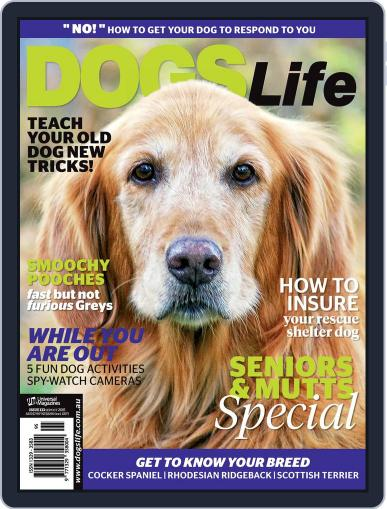 Dogs Life Magazine (Digital) August 20th, 2015 Issue Cover