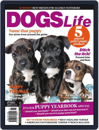 Dogs Life Magazine (Digital) December 18th, 2014 Issue Cover