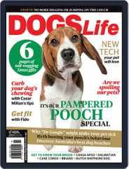 Dogs Life Magazine (Digital) Subscription October 14th, 2014 Issue