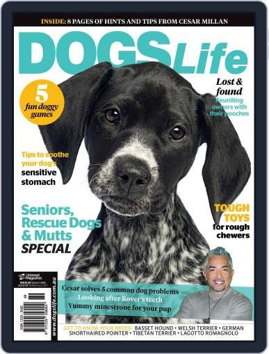 Dogs Life Magazine (Digital) August 25th, 2014 Issue Cover