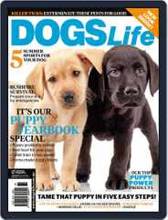 Dogs Life Magazine (Digital) Subscription December 17th, 2013 Issue