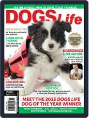Dogs Life Magazine (Digital) Subscription October 8th, 2013 Issue