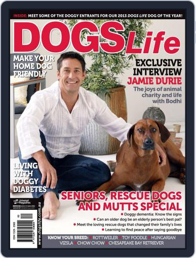 Dogs Life Magazine (Digital) August 19th, 2013 Issue Cover