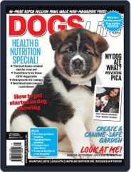 Dogs Life Magazine (Digital) Subscription April 18th, 2012 Issue