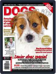 Dogs Life Magazine (Digital) Subscription November 22nd, 2011 Issue