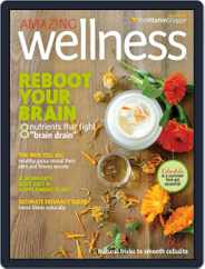Amazing Wellness (Digital) Subscription April 1st, 2015 Issue