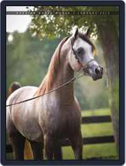 Arabian Horse World (Digital) Subscription February 5th, 2013 Issue