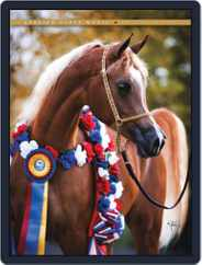 Arabian Horse World (Digital) Subscription December 19th, 2011 Issue