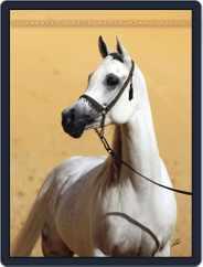 Arabian Horse World (Digital) Subscription May 13th, 2011 Issue