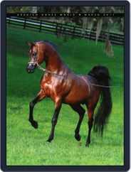 Arabian Horse World (Digital) Subscription March 23rd, 2011 Issue