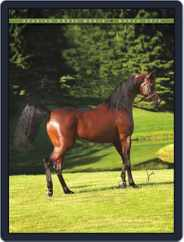 Arabian Horse World (Digital) Subscription March 11th, 2010 Issue