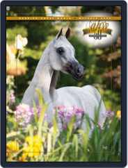 Arabian Horse World (Digital) Subscription October 8th, 2009 Issue