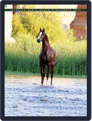 Arabian Horse World (Digital) Subscription December 22nd, 2008 Issue