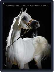 Arabian Horse World (Digital) Subscription November 25th, 2008 Issue