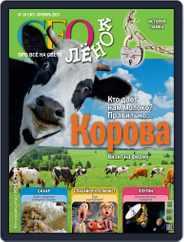 GEOленок Magazine (Digital) Subscription October 1st, 2013 Issue