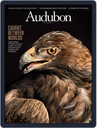Audubon (Digital) March 18th, 2019 Issue Cover