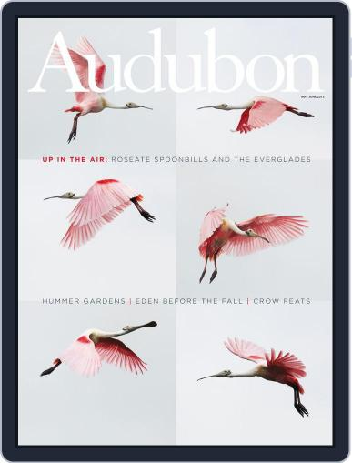 Audubon (Digital) May 1st, 2013 Issue Cover