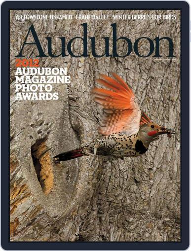 Audubon (Digital) January 2nd, 2013 Issue Cover