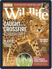 Bbc Wildlife (Digital) Subscription February 1st, 2020 Issue