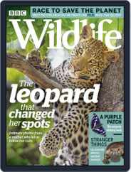 Bbc Wildlife (Digital) Subscription July 1st, 2019 Issue